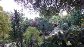 Botanischer Garten...