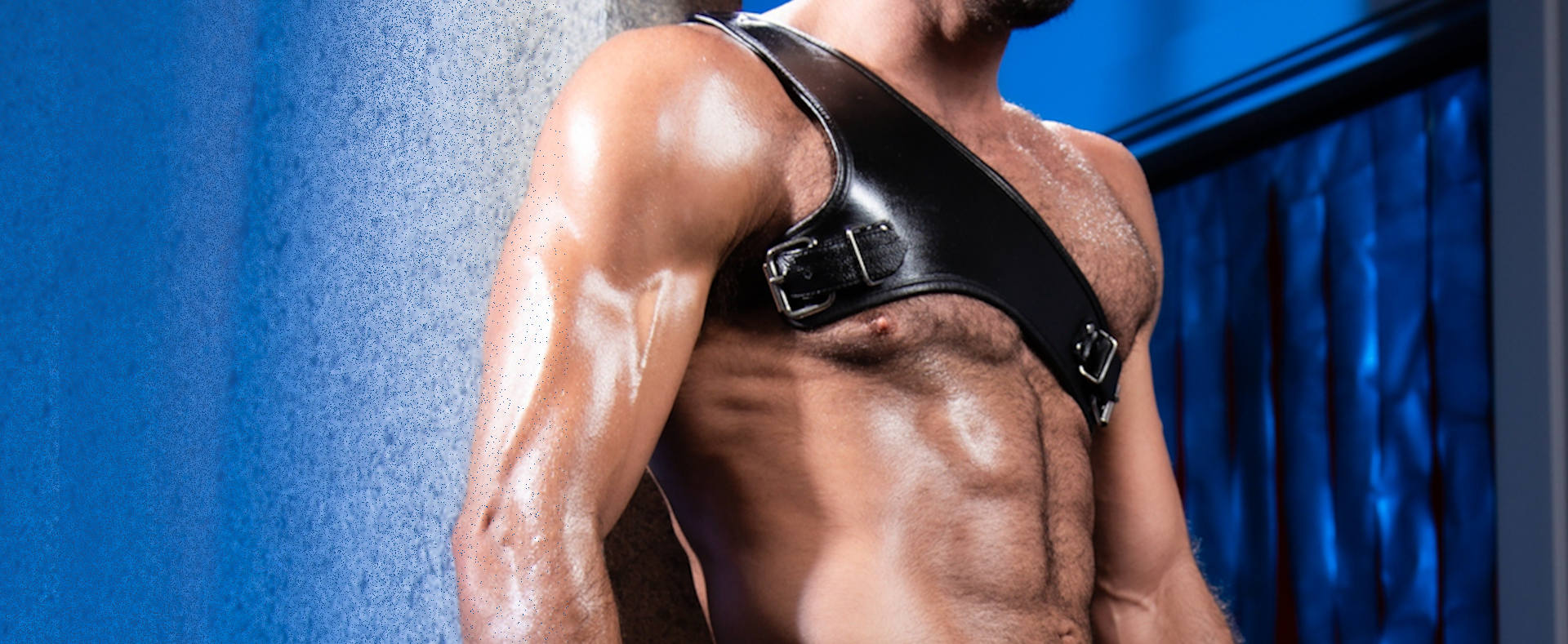 Best gay harness guide