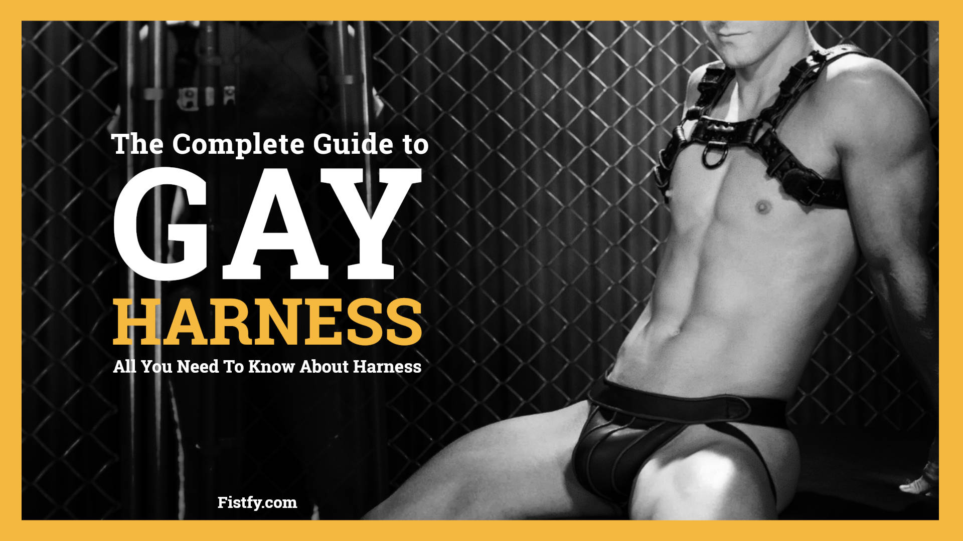 Gay Harness guide All of the porn harness types
