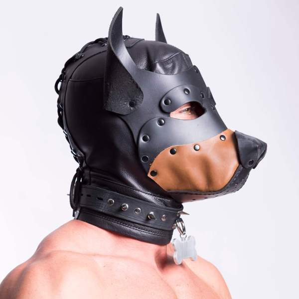 Dog Training Hood