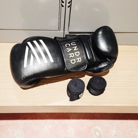 Hand Wraps and Gloves