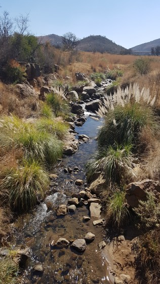 Sunday Hike and Lunch - 7 August 2016 - 5