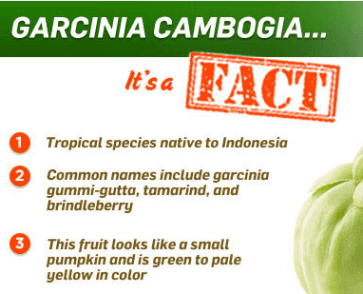 garcinia-cambogia-pure-extract-reviews-fitbeauty365