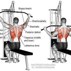 Pull Up Muscles Worked Diagram 2001 Saturn Sc2 Radio Wiring 3 Most Common Lat Pulldown Exercise Mistakes That Stop You
