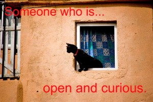 cat open and curious