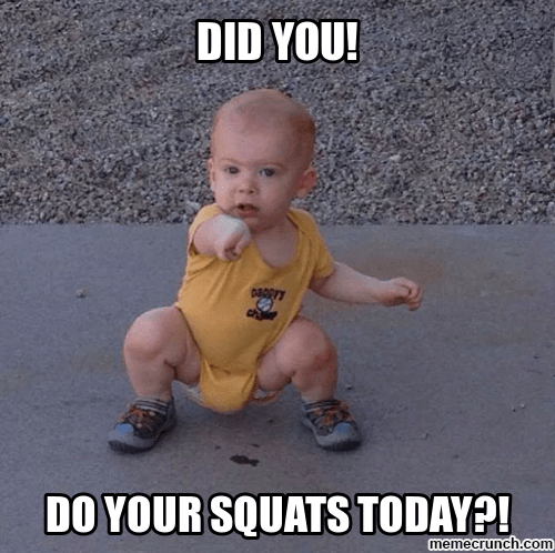Squat 101 Series