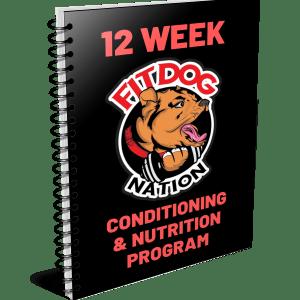FITDOG Programs