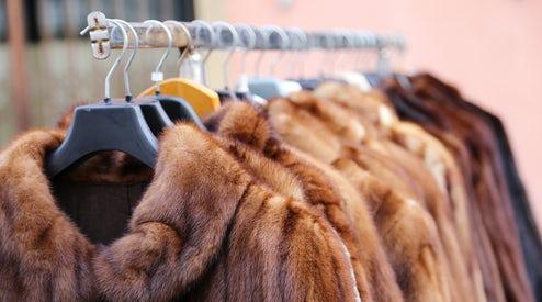 fur for christmas