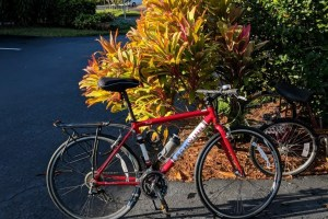 benefits of biking, entrepreneur