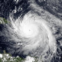 hurricane prep, entrepreneur