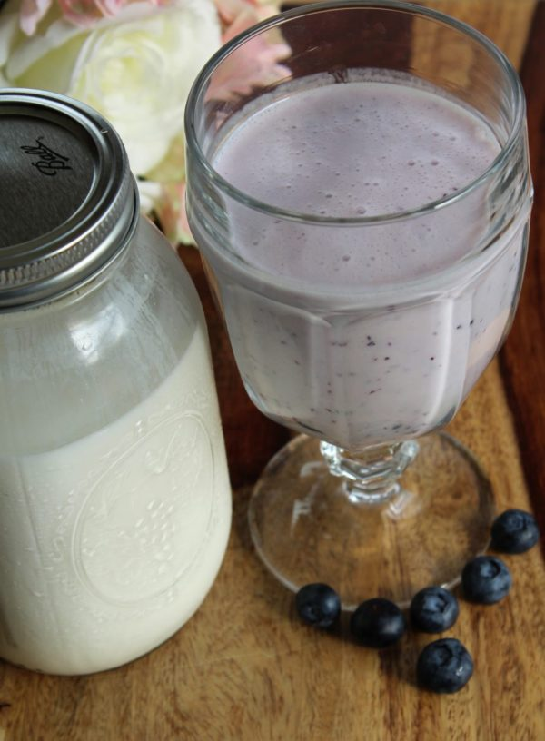 Blueberry Vanilla Kefir Smoothie, and how to make your own Kefir