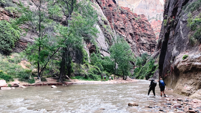 Weekend in Zion National Park with Kids