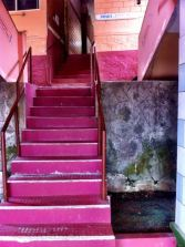 Views up the purple stairs to the tree-top studio at the Shivananda ashram in Neyyar Dam, Kerala