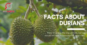 Facts about Durians