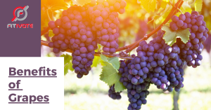 Grapes vs rasins, benefits of grapes, are grapes healthy