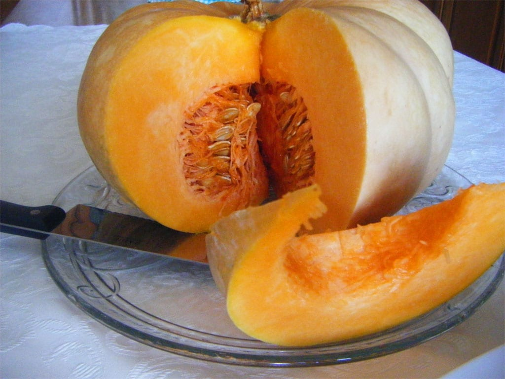 Superfood - Zucca