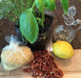 Plant-Based Paleo Pesto Ingredients