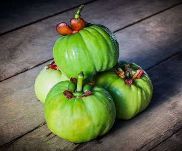 Garcinia Cambogia As Appetite Suppresant
