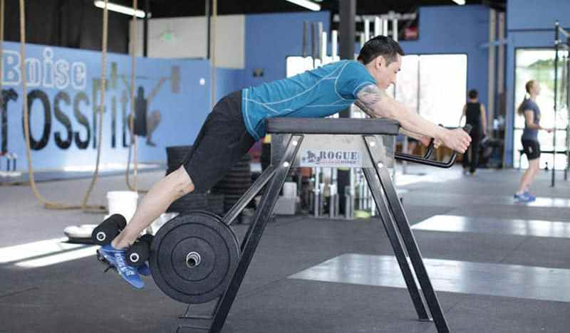 The 3 Best Reverse Hyper Extension Machines