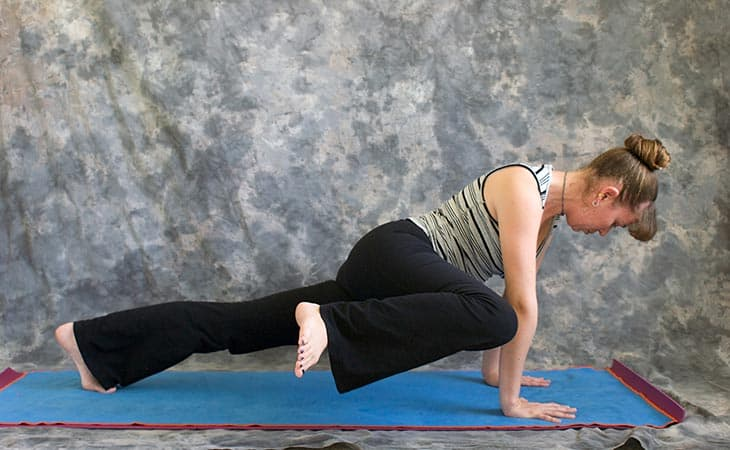 Woman Showing How To Plank Twist