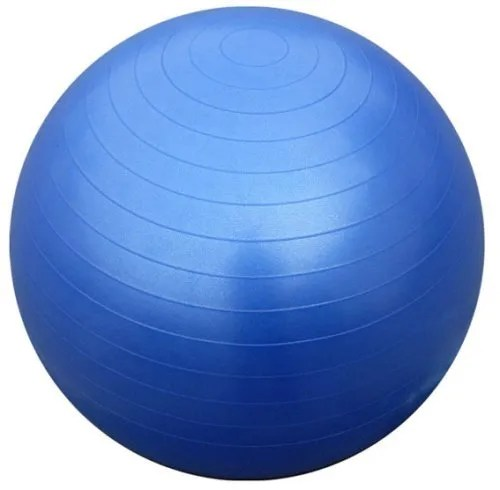 Gym Ball - Exercise Ball 65cm (Blue) With Dual Action Hand Pump