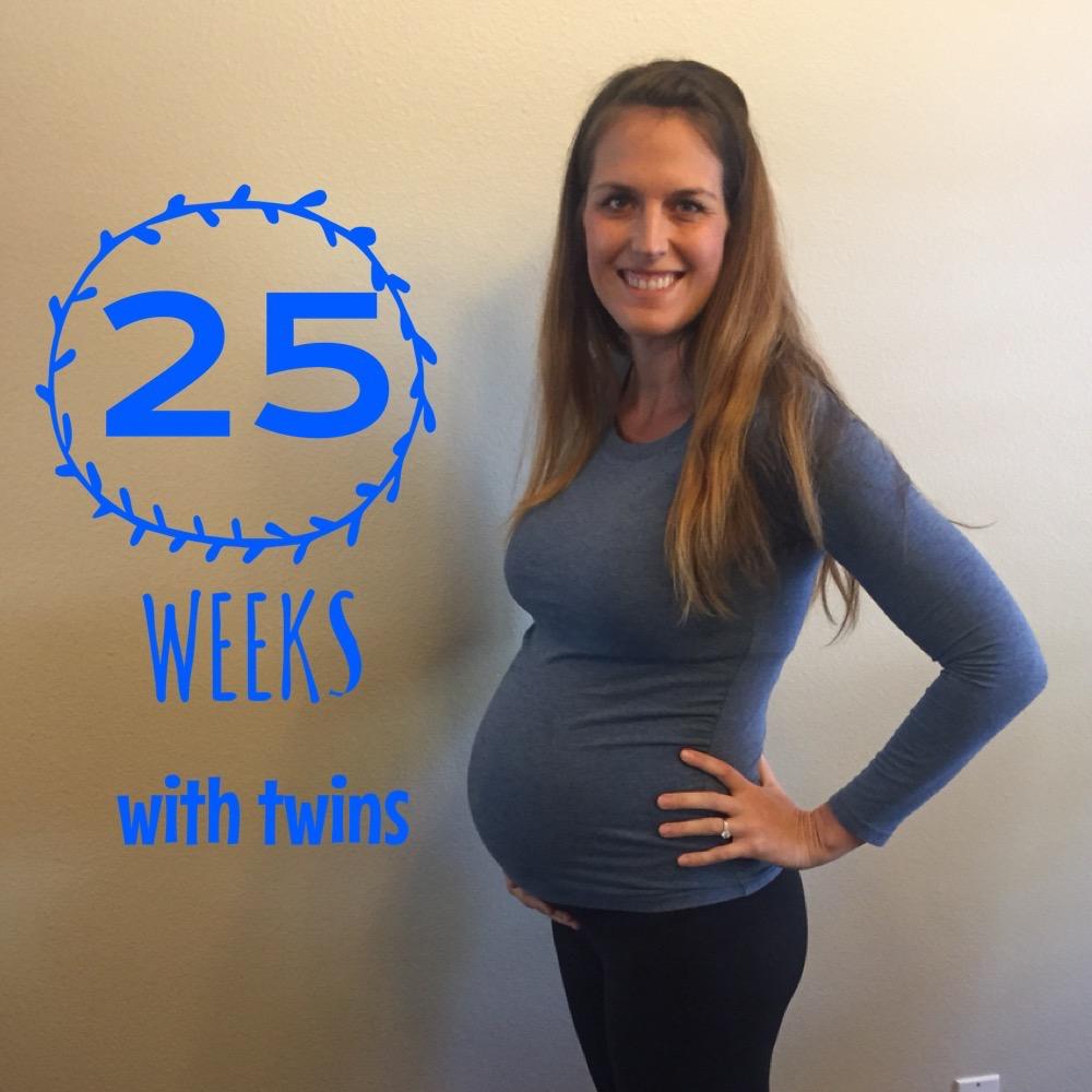 Twin Pregnancy Update – Weeks 23-25