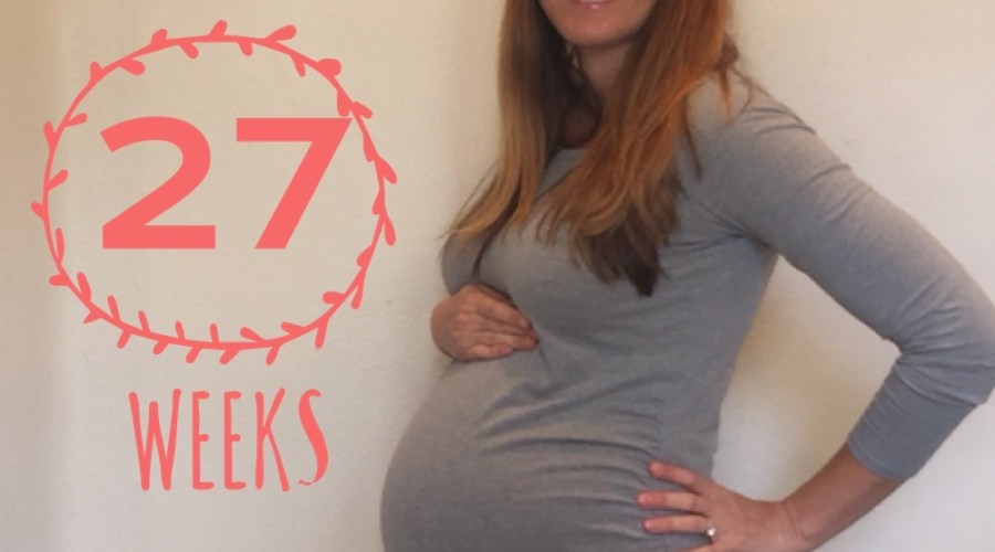Twin Pregnancy Update Weeks 26-27