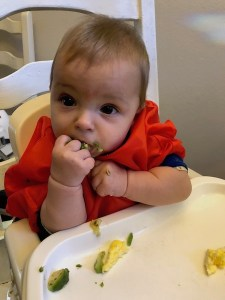 baby led weaning twins