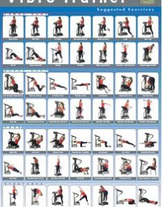 Exercise charts are  useful training aid for beginners and an excellent way to get grips with the exercises that can be performed also vibration plate basics fitness fighters guide rh fitnessfighters