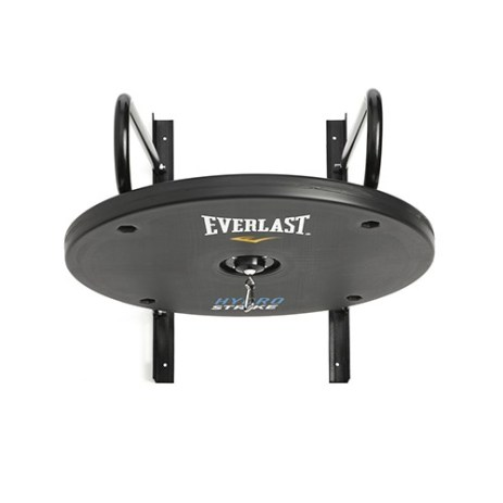 everlast hydrostrike speed bag platform