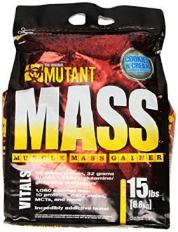 best mass gainer supplements