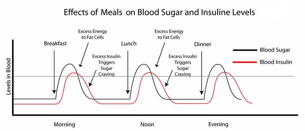 Looking at the chart above once glucose is released in blood stream insulin kicks and absorbs it all giving to cells that need also food sugar connection  rh fitnessfoodieweb wordpress