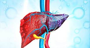 Natural Herbs for Liver
