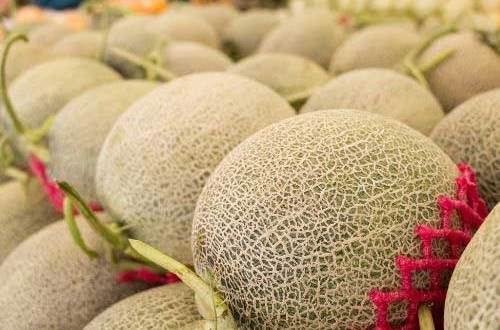 7 Powerful Muskmelon Benefits that you must Know