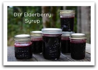 elderberrytoday