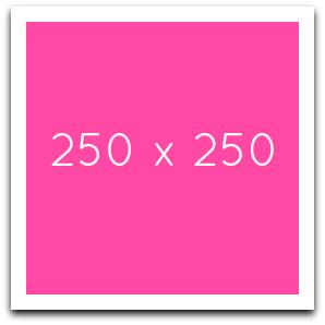 ad250x250