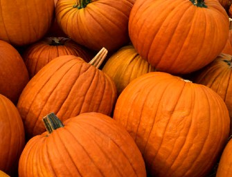 6 Great Ways to Use Pumpkins