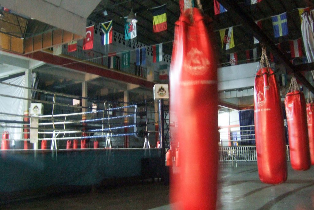 best punching bags top