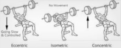 TUT & Muscle Contraction- Eccentric & Concentric