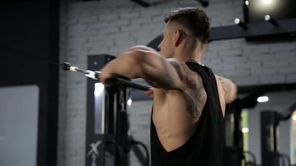 High Row - Back Exercise