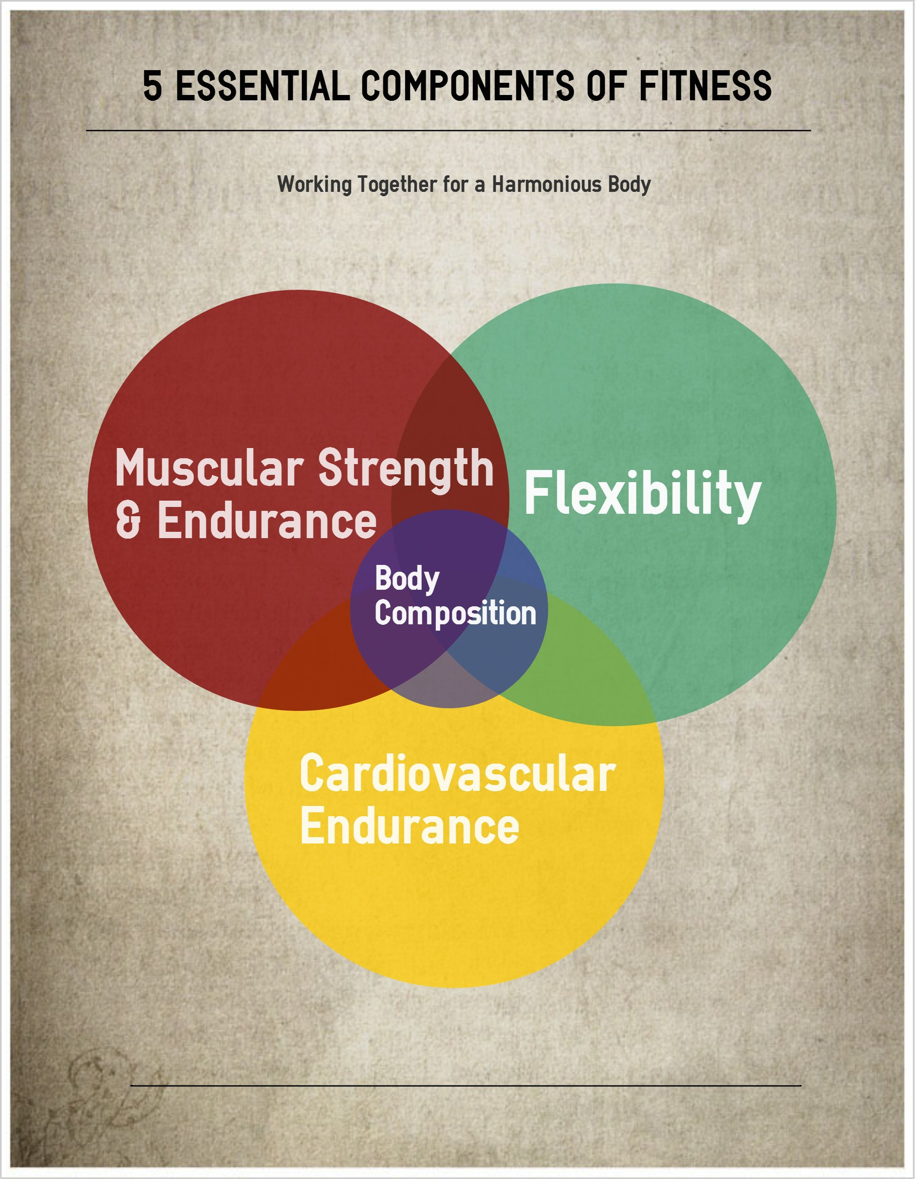 5 Essential Components Of Fitness