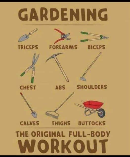 gardening in your backyard