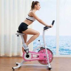 Sunny Health and Fitness Indoor Cycling Bike (Pink)- Adjustable Seat and Handlebars