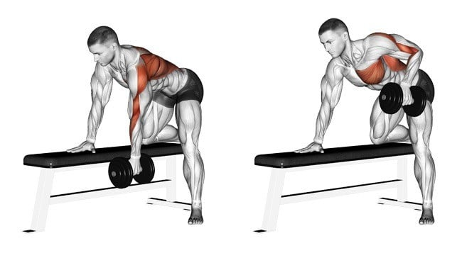 Top 10 Back Exercises For Building Width and Thickness ...