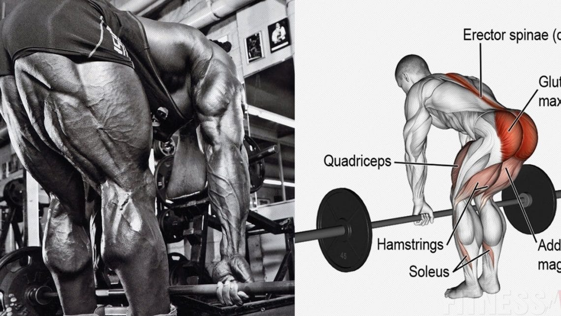 5 Should-Have Hamstring Workout routines For Jacked Legs