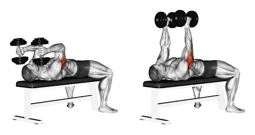 Dumbbell Skull Crushers