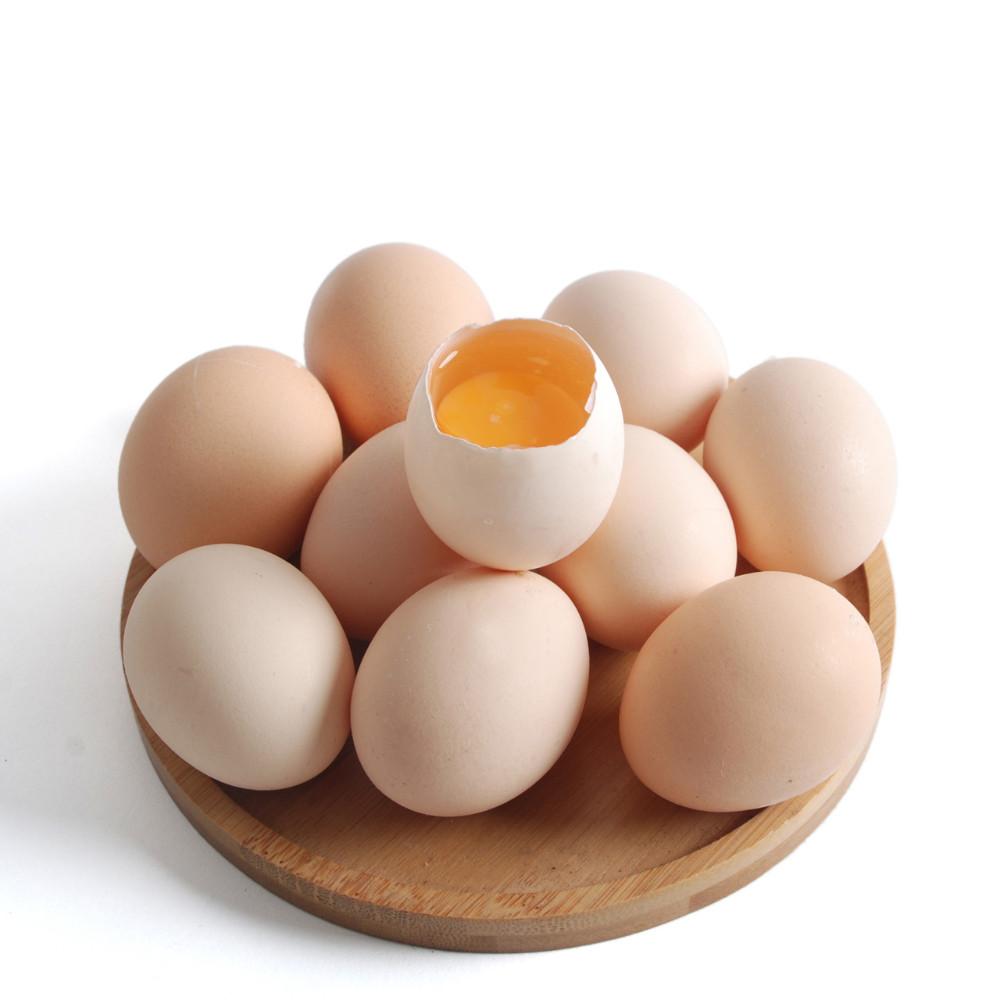 price-of-egg-whites-what-is-albumen