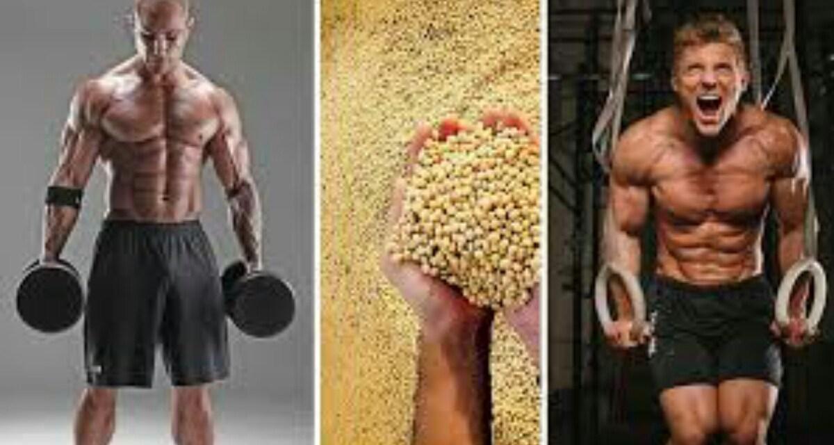 8 increíbles beneficios y usos de Proteína de Soya