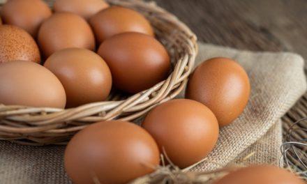 El huevo ¿Tan malo como dicen?