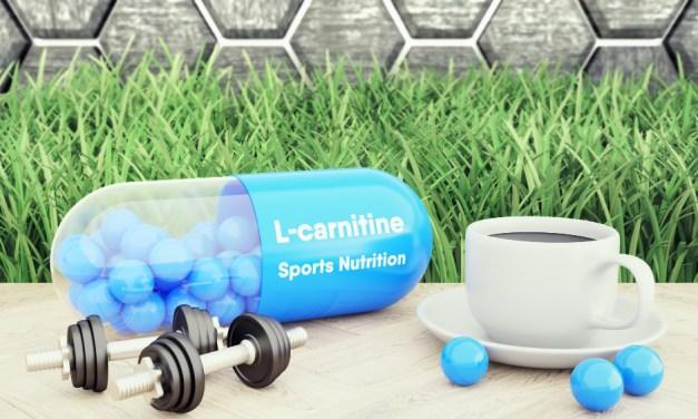 L-carnitina y su efecto en la oxidación de grasa